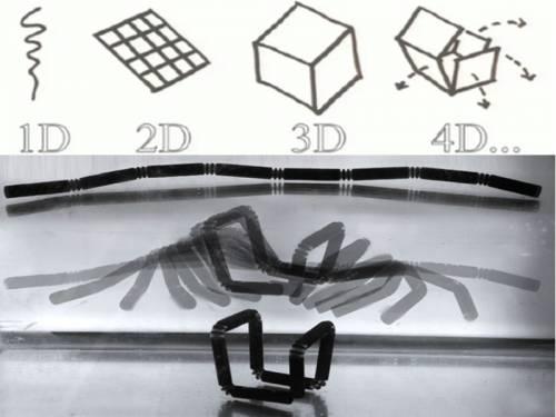Imprimare 4D