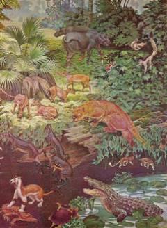 Viața a înflorit după dispariția dinozaurilor