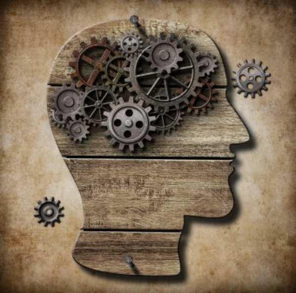 Cum funcționează memoria