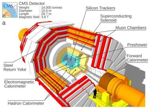 Detectorul Compact Muon Solenoid