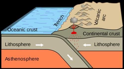 Zonele de subducție