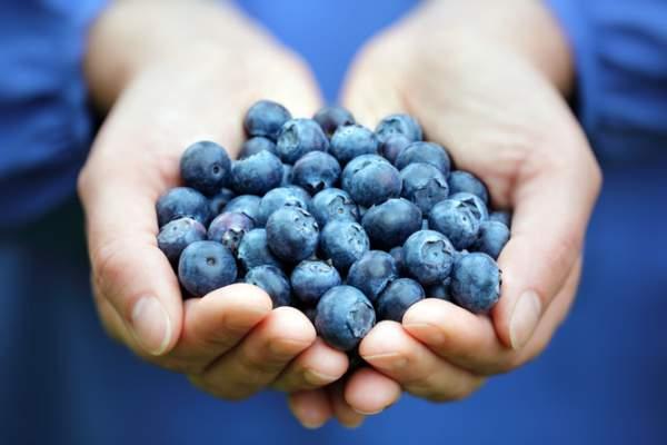 Supradoză de antioxidanți