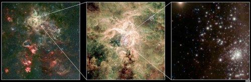 R136a1 se află într-un cluster dens de stele