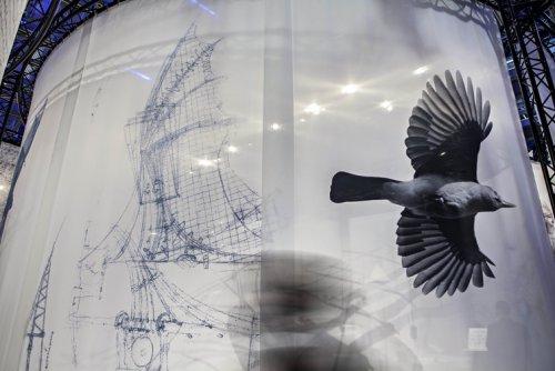 Leonardo da Vinci-Aripi de pasăre