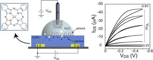 Schema electronică a biosenzorului
