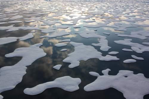 Topirea banchizelor de gheață