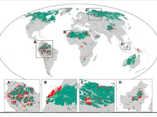Harta regiunilor sălbatice de pe Pământ