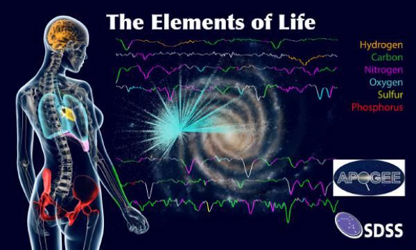 Elementele chimice ale vieții