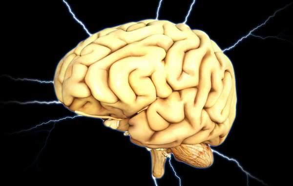 Ingineria genetică ne poate face mai inteligenți