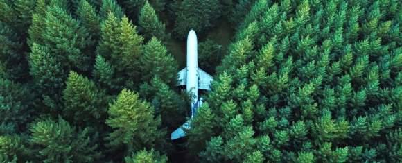 Omenirea a modificat iremediabil biosfera planetei