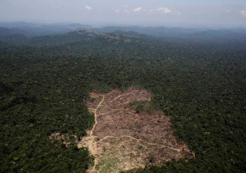 Despăduririle din Amazon