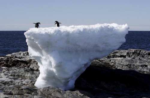 Topirea ghețarilor din Antarctica
