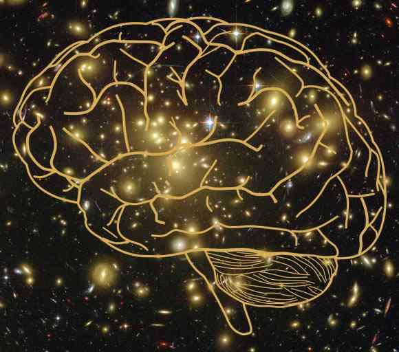 Constiința o caracteristică fundamentală a Universului
