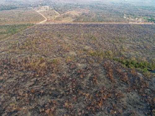 Distrugerile provocate de incendiile din pădurea amazoniană