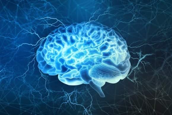 Creierul uman nu funcționează precum un computer