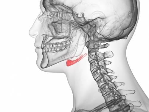 Osul hioid