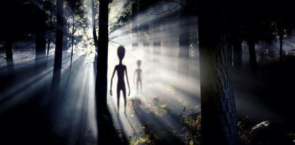 Forme de viață extraterestre pe Pământ