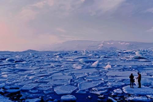 Topirea gheții marine
