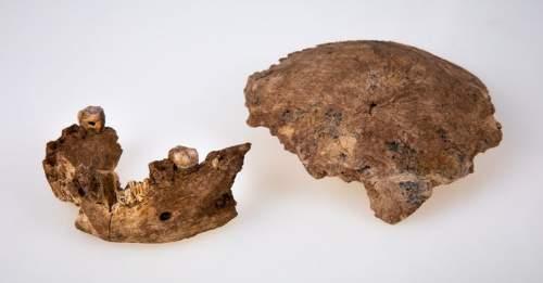 Mandibula și craniul Nesher Ramla