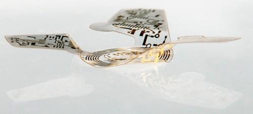 Microcip cu aripi
